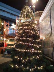 シーサイドガーデン(クリスマスツリー)